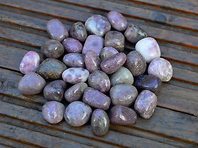 5 Medium Lepidolite Tumblestones -- 20mm - 30mm  -- Wholesale Bulk Job Lot