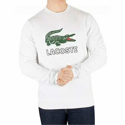 397465537bed SWEAT LACOSTE BLANC 6xl - EUR 60