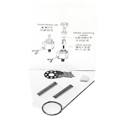 Solenoid Repair Kit & Hole Picker Silver Star Gravity Feed Iron ES85A ES300 E...