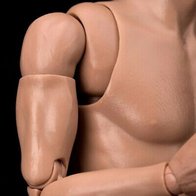 WorldBox 1/6 Scale Narrow Shoulder Male Figure Body Strong Durable 1 Pair Hands
