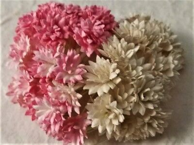 60 Paper 12mm FLOWERS PINK & WHITE MP3D13PPW  Miniature Decoration Cards Cakes