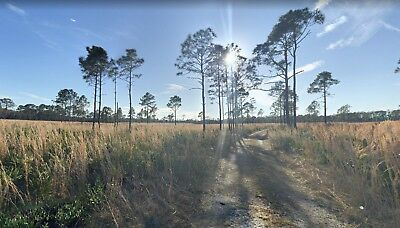 5 Acre Lot in Central Florida: Includes Usage Rights to a 10,000 Acre Area! WOW