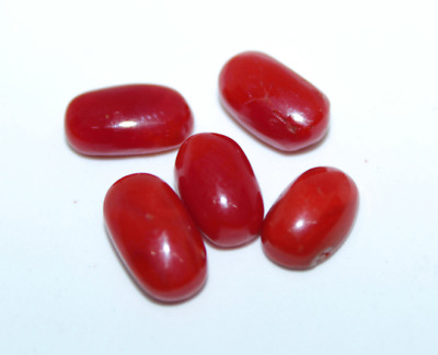 Aaa Top Quality Italian Red Coral Loose Gemstone Oval Shape Cabochon 5 Pcs Lot