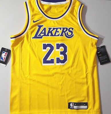 timeless design bc34f 23568 NIKE 2018/19 LAKERS Lebron James Swingman ICON EDITION NBA Jersey Yth Sz  10/12 M