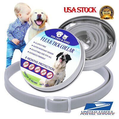 Dewel Flea and Tick Collar Adjustable for Small Medium Large Dogs Pets 8 Month