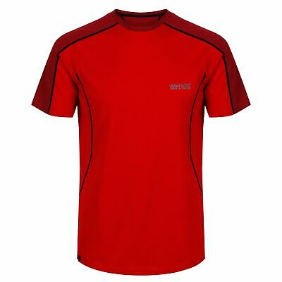 Dare2b Institute Wool Herren T-Shirt Hybrid Funktionsshirt 50% Wolle Anti-Geruch Herren Outdoor-Hemden