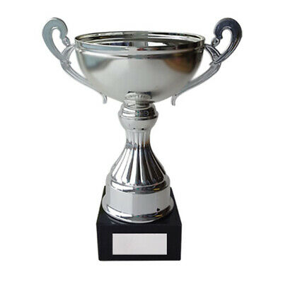 Silver Cup Trophy Award 250mm Ovation FREE Engraving