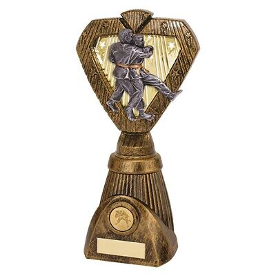 Hero Frontier Martial Arts Judo Trophy Award 250mm FREE Engraving