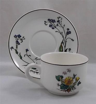 Villeroy & and Boch BOTANICA tea cup and saucer (brown stamp)