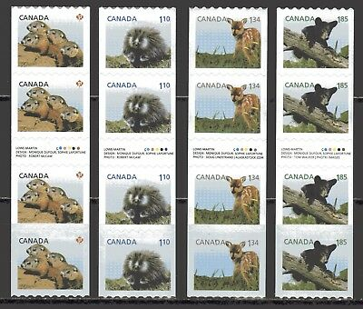 2013 Canada SC# 2604i-7i Baby Wildlife Coils Gutter Strips of 4 M-NH Lot# C573