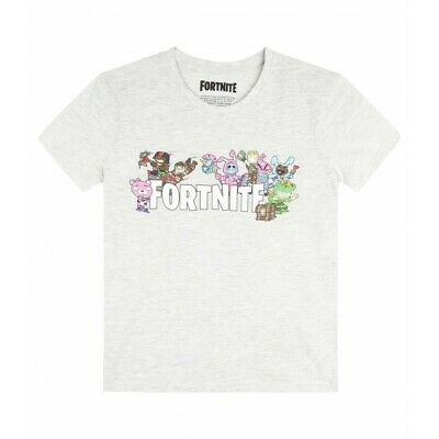 Fortnite Tee shirt Garcon manches courtes - Personnages Fortnite - Gris