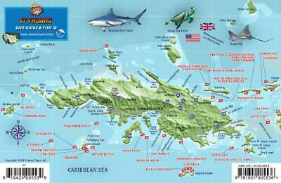 ST. THOMAS USVI Dive Map Fish ID Virgin Islands Waterproof Fish Card ...