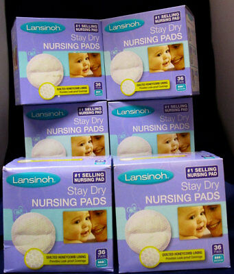 Lansinoh Disposable Stay Dry Nursing Pads Boxes of 36. (Lot of 6) Free Shipping