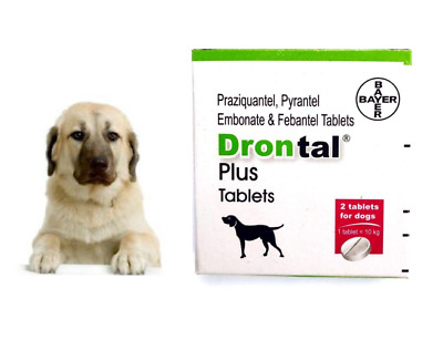 Bayer drontal for Dogs & Puppies (4,8,12 Tablets) Roundworm Tapeworm Dewormer