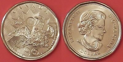 Brilliant Uncirculated 2016 Canada Lucky 1 Dollar From Mint's Roll