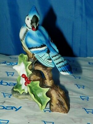 Christmas Blue Jay With Berry In Mouth