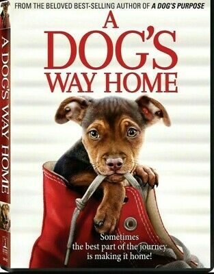 A Dog's Way Home (DVD,2019) NEW-Drama, Family-PRE-SALE SHIPS ON 04/09/19