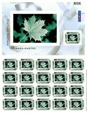 Canada Stamp #2063 Sheet or Pane 21 stamps MNH Picture Postage