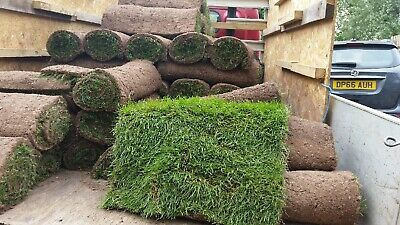 Fresh Cut Turf Rolls