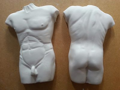 Male torso front & rear x 2 rubber latex moulds molds wall decor plaques plaster