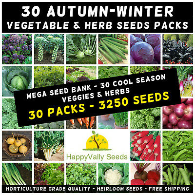 Mixed Autumn Winter 3250+ Seeds Cool Season Heirloom Vegetable & Herb 30 Packets