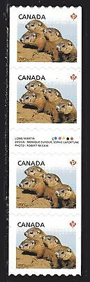 2013 Canada SC# 2604i Baby Wildlife Woodchucks Gutter strip of 4 Lot# C 483 M-NH
