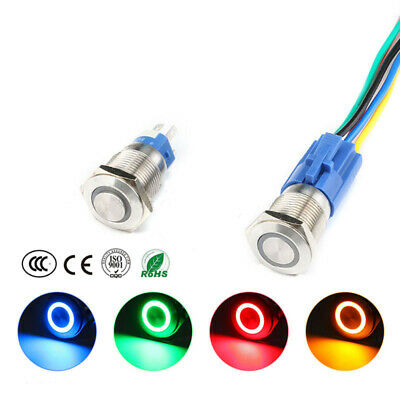 19mm 6V/12V/24V/220V Car Boat Instrument LED Metal Waterproof Push Button Switch