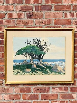 California Artist James March Phillips W/C. Cypress Tree Near Monterey Signed