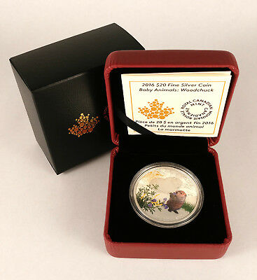 Canada 2016 $20 Baby Animals Series - Woodchuck 99.99% Fine Silver Coin