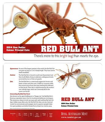 2014 $1 Bright Bugs - Red Bull Ant Colour Printed Coin