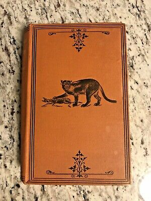 """1880 Antique Hunting Book """"Wanderings in the Western Land"""""""