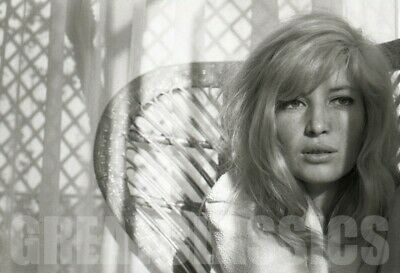 Monica Vitti 1963 At Home Breathtaking Camera Negative Peter Basch