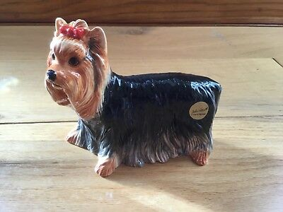 John Beswick Pampered Pooches Yorkshire Terrier JBPP4 New In Box