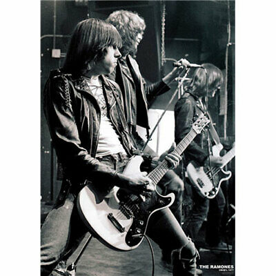 The Ramones - 1977 POSTER 59.5x86cm NEW music punk band Johnny Dee Joey