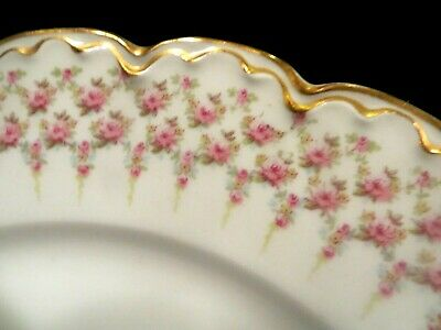 Antique Theo. Haviland Limoges Roses & Double Gold 349A Dinner Plates (2)