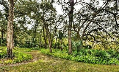 12.49 Acre Lot in Central Florida: Affluent Residential Area in Greater Orlando!