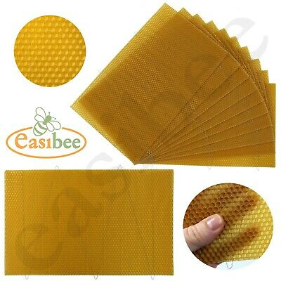 National Beehive Brood Box Wired Wax Foundation Sheets Hive Beekeeping Easibee