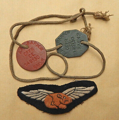 Dogtags & Wings GUINEA PIG CLUB Medical EXPERIMENTAL Plastic Surgery WW2 Aircrew