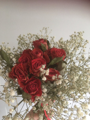 Dried Rosebud and Dried Gypsophilia Hand Tied Bouquet