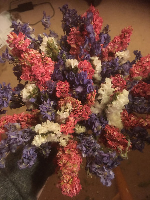 Dried Delphinium and Statice Hand Tied Bouquet