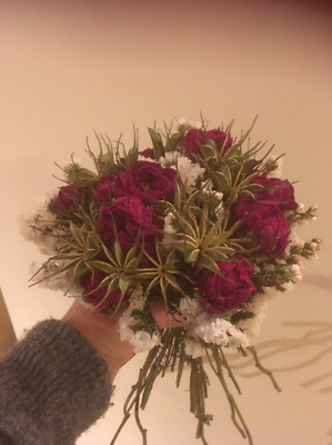 Dried Peony and Dried Statice Hand Tied Bouquet