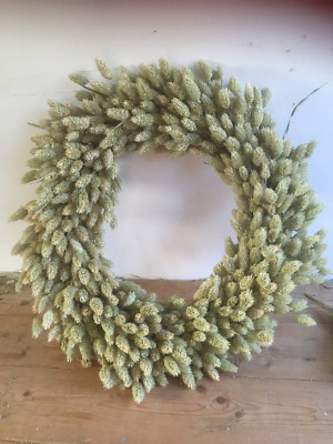 Dried Phalaris Wreath