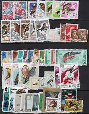 Europe. Packet of over 100 Bird Thematics from the European area. Mainly CTO