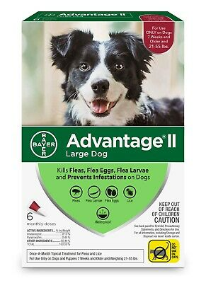 Advantage II Flea Treatment for Large Dogs, 6 Monthly Treatments ~ 6 counts !!!