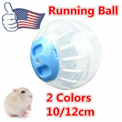 Hamster Exercise Running Ball Play Toy 10/12 Plastic Pets 2 Size Health Funny US