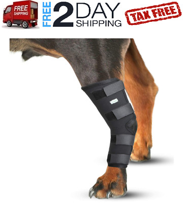 Knee Brace For Dogs Hock Protector ACL Therapeutic Dog Rear Leg