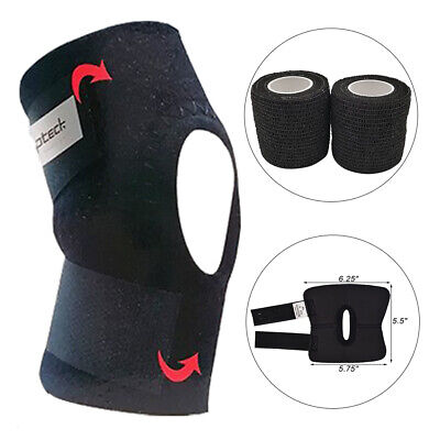 1 Pc Knee Brace Dog Canine Safety Rear Leg Hock Joint Protection Legs Ankle