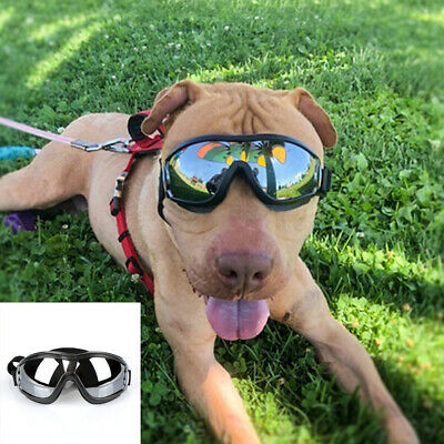 Pet Dog Protective Motorcycle Goggles UV Sunglasses For Middle Large Dogs Wear