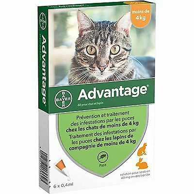 BAYER Advantage 40 Anti-puces Chat et Lapin -4kg - 6 pipettes