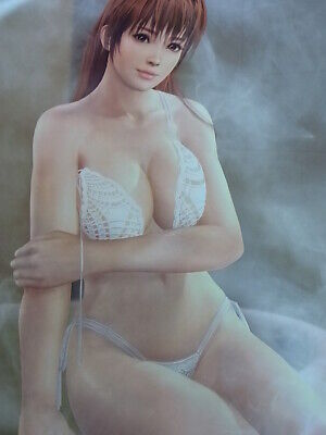 DEAD OR ALIVE Xtreme 3 Scarlet Hitomi B2 Size Cloth Poster